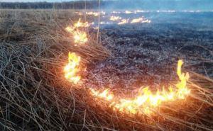 За сутки пожары уничтожили 70 га сухой травы