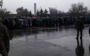 При открытии КПВВ в Золотом и Счастье нужно учесть опыт Станицы Луганской,— правозащитник