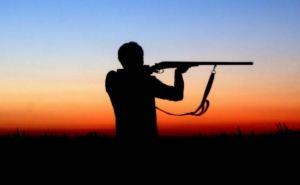 В Луганске определили правила охоты на сезон 2020-2021. Волков и лисиц можно стрелять только в уикенд