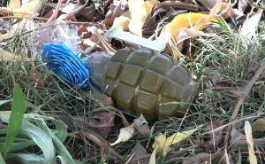 Ручную гранату Ф-1 нашли в Луганске недалеко от Ленинской налоговой