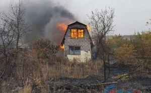 Под Луганском в Большой Вергунке горят дачи. ФОТО