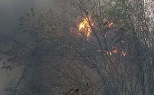 Из 85 зафиксированных пожаров не локализовано и не ликвидировано больше половины. ВИДЕО
