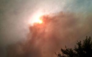 Жители Луганщины более 300 раз пожаловались на действия властей во время пожара