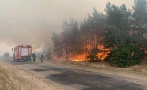 Под Станицей Луганской при тушении пожара на мине подорвался пожарный автомобиль. Есть раненые