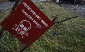 Житель Трехизбенки подорвался на мине