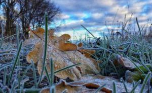 Метеорологи предупреждают о заморозках в Луганске и области