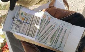 В пятницу 13ноября пограничники конфисковали 13 тысяч долларов на КПВВ. ФОТО. Видео
