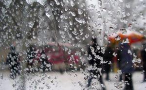 Сегодня в Луганской области дождь со снегом, на дорогах гололед