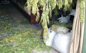 Житель Луганской области хранил в гараже 10кг наркотических веществ. ФОТО