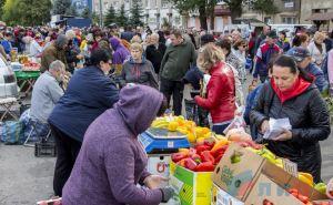 В Луганске в малом и среднем предпринимательстве задействовано 41 600 человек