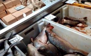 Купить рыбы к Новому году. Луганчанка сходила на рынок и сфотографировала ценники. ФОТО