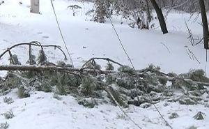 Из-за налипания снега на проводах произошло аварийное отключение ЛЭП 6 кВ