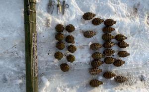 Пограничники  в Станице Луганской обнаружили тайник с 30-ю ручными гранатами