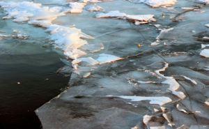 В Донецке во льду водоема Ботанического сада обнаружили труп женщины