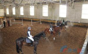 В Луганске на фестивале по конному спорту соревновались в конкуре. ФОТО