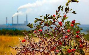 На Донбассе будут мониторить экологическую ситуацию