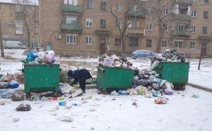 Мусорные баки переполнены: кто виноват в свалках на улицах Луганска?