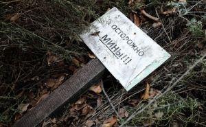 На берегу Северского Донца подорвался мирный житель