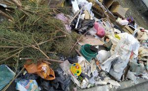 Серьезные штрафы и конфискация транспорта— как в Луганске будут наказывать за неправильно выброшенный мусор
