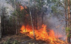 В Луганской области организованы командно-штабные учения по ликвидации пожаров