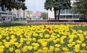 Прогноз погоды в Луганске на 6мая