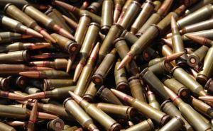 На Луганщине у местного жителя изъяли более 900 единиц оружия и боеприпасов (ФОТО)