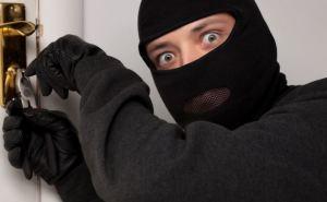 В Донецкой области бдительные соседи предотвратили кражу