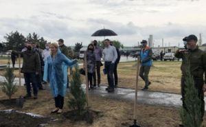 Эстония поможет с восстановлением лесов на Луганщине