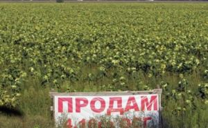 Рада разблокировала закон о продаже земли через электронные аукционы