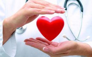 Северодонецкие врачи проведут бесплатные обследования сердца. Запись по телефону