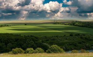 Как защитить аграриев от коррупции и рейдерских атак. На Луганщине обсудили развитие аграрного сектора в регионе