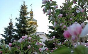 Сегодня Троицкая родительская суббота. Что должен сделать каждый православный
