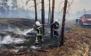 Высокий риск пожаров в Луганской области с 23июня