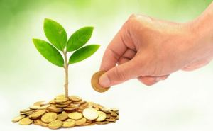 Предприниматели Луганщины отдали более 36 млн на экологию