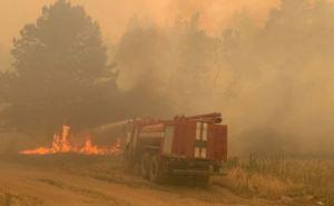 Высочайший уровень пожароопасности сохранится в Луганской области до конца недели