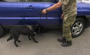 В Луганске ввели усиленное патрулирование и досмотр транспорта
