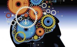 Мозг человека положительно реагирует на азартные игры— эксперт