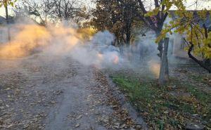 В Луганске штрафуют жителей за сжигание сухой листвы. ФОТО