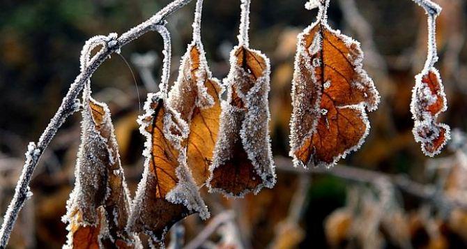 Погода в Луганске на завтра, 19ноября: -5°С