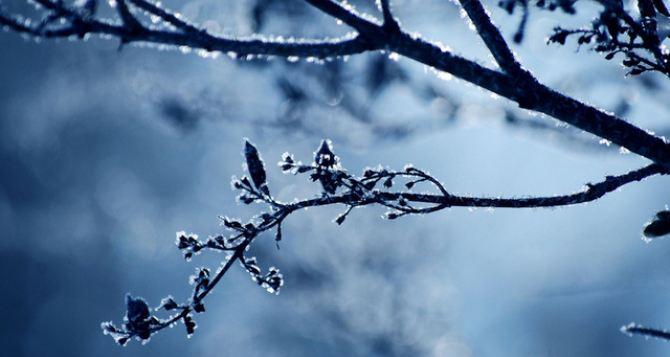 Погода в Луганске на завтра, 11декабря:— 17°C