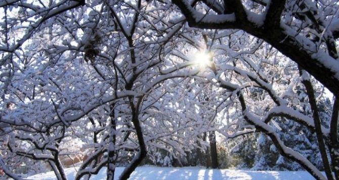 Погода в Луганске на завтра, 12декабря: -16°С