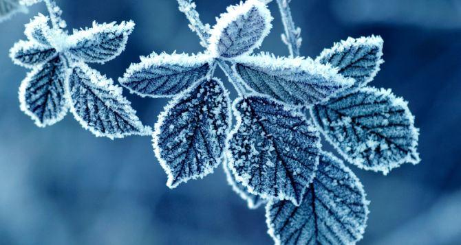 Погода в Луганске на завтра, 13декабря: похолодает до -19°С