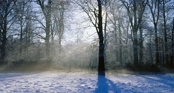 Погода в Луганске на завтра, 17декабря: -3°С