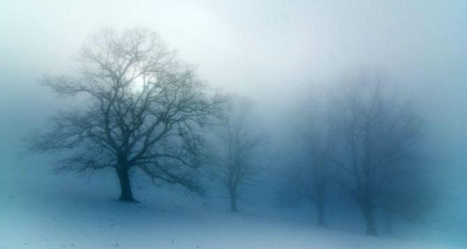 Гидрометцентр предупреждает о тумане и сильном ветре