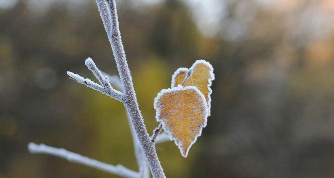 Погода в Луганске на завтра, 15января