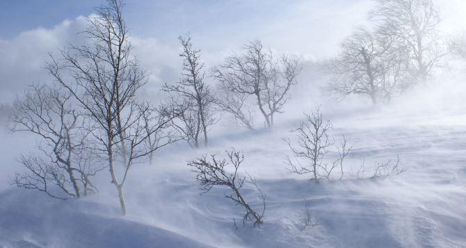 Погода в Луганске на завтра, 22января: метель