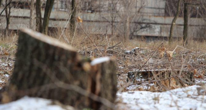 Луганчане выиграли суд по делу о строительстве заправки в квартале Якира