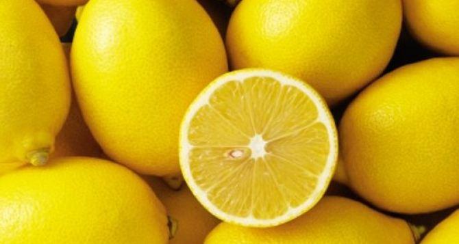 Учимся выбирать лимон: несколько советов