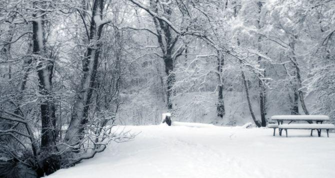Погода в Луганске на завтра, 4февраля