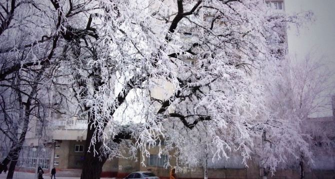 Погода в луганске на завтра 7 февраля